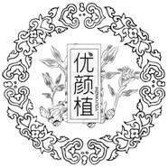 http://new-img1.ol-cdn.com/133/903/liyN8jtIRe6lo.jpg