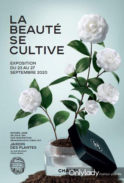 香奈儿《植蕴之美》展览