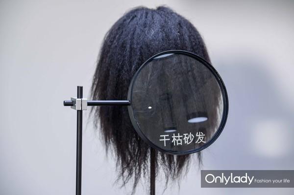 模拟四大头发问题:干枯砂发