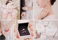 戴比尔斯钻石珠宝2015婚嫁系列