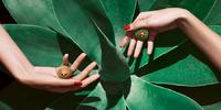 别致不羁,褪去尖刺 - 卡地亚全新Cactus de Cartier珠宝系列
